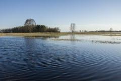 水在草甸和树丛 图库摄影