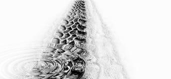 水坑起波纹跟踪轮胎 库存图片