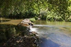水坝在水晶水河,包围由绿色植被 图库摄影