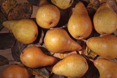 水多的成熟梨和烘干叶子 库存照片