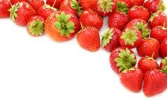 水多的成熟草莓 免版税库存图片