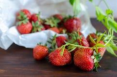 水多的成熟鲜美草莓夏天收获与绿色枝杈的在黑暗的桌上 库存图片