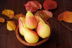 水多的成熟黄色梨和秋叶在一张木桌里 免版税图库摄影