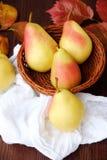 水多的成熟黄色梨和秋叶在一张木桌里 免版税库存图片