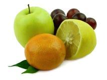 水多的新鲜水果 库存图片