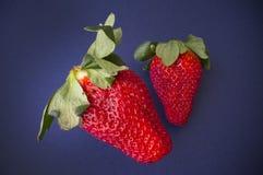 水多的草莓 图库摄影