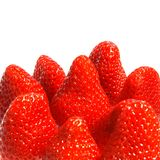 水多的草莓 库存照片