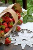 水多的草莓 免版税库存照片