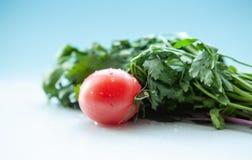 水多的蕃茄和莳萝用荷兰芹在浅兰的背景,特写镜头 库存照片