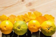 水多的银杏树树黄色和绿色蜜桔和叶子在一张新鲜的未加工的木桌上的 库存图片