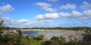 水多绿色大草原。 图库摄影