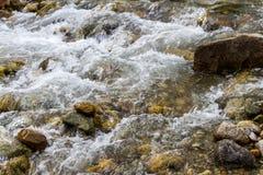 水小河在山小河的 免版税库存图片