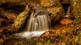 水小河在森林里 免版税图库摄影