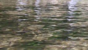 水小河河液体波纹 股票视频