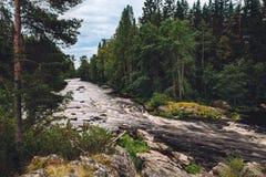 水山快速的河小河在岩石的与绿色森林在芬兰 免版税图库摄影