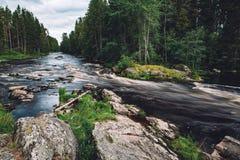 水山快速的河小河在岩石的与绿色森林在芬兰 库存图片