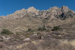 水平器官山在西南新墨西哥 库存照片