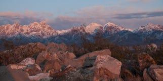 水平的器官山在Las克鲁塞斯,NM东部的金黄小时 免版税库存照片