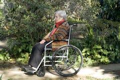 水平的外部坐的轮椅妇女 免版税库存照片