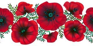 水平的无缝的背景花明亮的红色鸦片、叶子和芽,传染媒介例证, 库存例证