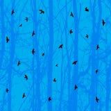 水平的无缝的背景,鸟,蓝色结构树 免版税图库摄影