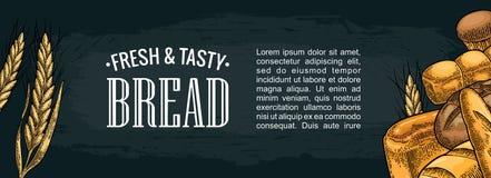 水平的海报用面包 传染媒介颜色手拉的葡萄酒板刻 免版税图库摄影