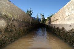 水平的灌溉 库存照片
