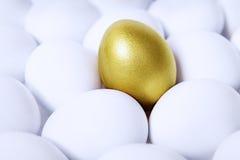 水平金的鸡蛋 库存图片