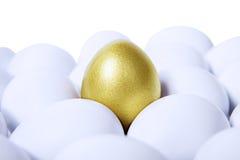 水平金黄的鸡蛋 免版税库存图片