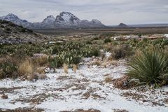 水平,Rockhound公园,新墨西哥,冬天视图 库存照片