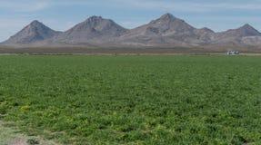 水平Tres Hermanas山脉在西南新墨西哥 免版税库存照片