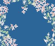 水彩五颜六色的玫瑰牡丹花卉集合 免版税库存照片
