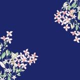 水彩五颜六色的玫瑰牡丹花卉集合 免版税库存图片