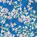 水彩五颜六色的玫瑰牡丹花卉集合 图库摄影