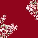 水彩五颜六色的玫瑰牡丹花卉集合 库存照片