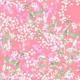 水彩五颜六色的玫瑰牡丹花卉集合 库存图片