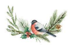 水彩传染媒介与冷杉分支和红腹灰雀的圣诞节花圈 向量例证