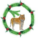 水彩冷杉分支,红色莓果圣诞节花圈,与а老虎 向量例证