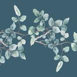 水彩叶子例证水彩叶子例证 免版税库存图片