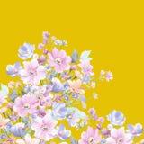水彩向日葵蜂鸟背景 库存照片