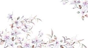 水彩向日葵蜂鸟背景 库存图片