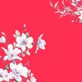 水彩向日葵蜂鸟背景 图库摄影