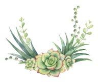 水彩在白色背景和多汁植物隔绝的传染媒介花圈仙人掌 皇族释放例证