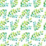 水彩在白色背景的绿色枝杈 春天,夏天草本无缝的样式 库存例证