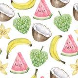 水彩夏天异乎寻常的果子样式热带水果 在白色背景的手画异乎寻常的coctails Cherinmoya,西瓜, 库存照片