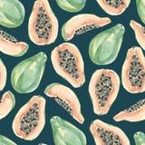 水彩夏天异乎寻常的果子样式热带水果 在白色背景的手画异乎寻常的coctails E 免版税库存照片