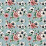 水彩多汁植物,毛茛属,银莲花属无缝的样式 手画花, eucaliptus叶子,莓果和 免版税库存图片