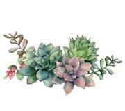 水彩多汁花束用莓果 手画绿色和紫罗兰色被隔绝的花、分支和红色莓果  免版税库存图片