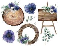 水彩婚礼装饰设置与蓝色银莲花属 手画玉树叶子和分支,植物,树花圈 免版税图库摄影