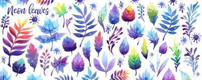 水彩幻想霓虹天空星系月亮叶子集合 在白色背景的波斯菊紫罗兰紫色桃红色蓝色叶子 库存例证